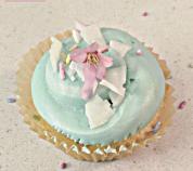 cover cupcake